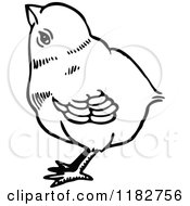 Clipart Of A Black And White Chick 3 Royalty Free Vector Illustration by Prawny