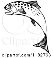 Black And White Jumping Fish