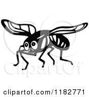 Black And White House Fly