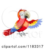 Cartoon Of A Presenting Scarlet Macaw Parrot 1 Royalty Free Vector Clipart