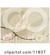 Two Pink Birds Perched On A Branch With Blossoms Clipart Illustration