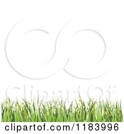 Clipart Of A Background Of White Copyspace With Grass And Spring Flowers Royalty Free Vector Illustration by vectorace