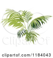 Clipart Of A Fern Or Palm Plant Royalty Free Vector Illustration by dero