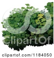 Clipart Of A Green Shrub Royalty Free Vector Illustration by dero