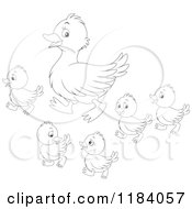 Cartoon Of An Outlined Mother Duck And Baby Ducklings Royalty Free Vector Clipart
