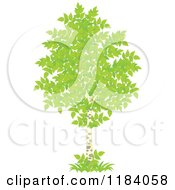 Cartoon Of A Birch Tree With Green Foliage Royalty Free Vector Clipart by Alex Bannykh