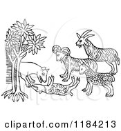 Clipart Of A Black And White Wolf And Goats Royalty Free Vector Illustration by Prawny Vintage