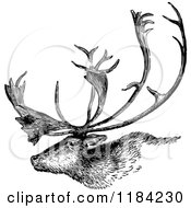 Clipart Of A Retro Vintage Black And White Deer Stag Profile Royalty Free Vector Illustration by Prawny Vintage