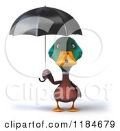 Clipart Of A 3d Mallard Drake Standing Under An Umbrella Royalty Free CGI Illustration