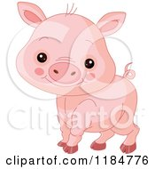 Cartoon Of A Cute Baby Piglet Smiling Royalty Free Vector Clipart by Pushkin