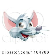 Happy Gray Rat Face