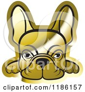 Clipart Of A Golden Frenchie Dog Looking Over A Surface Royalty Free Vector Illustration