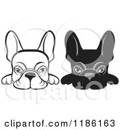 Clipart Of Black And White Frenchie Dogs Looking Over A Surface Royalty Free Vector Illustration by Lal Perera