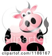 Clipart Of A Curious Pink Cow Royalty Free Vector Illustration