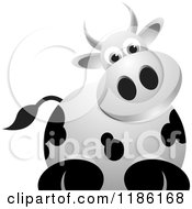 Clipart Of A Curious Cow Royalty Free Vector Illustration