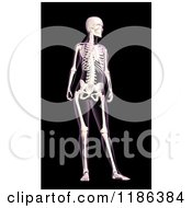 Clipart Of A 3d Female Xray With Visible Skeleton On Black Royalty Free CGI Illustration
