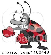 Cartoon Of A Mad Ladybug With Boxing Gloves Royalty Free Vector Clipart by toonaday