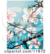 Flowering Magnolia Tree Clipart Illustration by AtStockIllustration