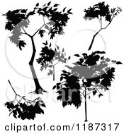 Clipart Of Silhouetted Branches And A Tree Royalty Free Vector Illustration