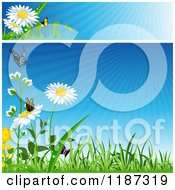 Clipart Of A Spring Website Banner And Background With Grass Flowers And Butterflies Royalty Free Vector Illustration