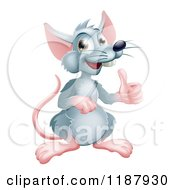 Cartoon Of A Happy Gray Rat Mascot Holding A Thumb Up Royalty Free Vector Clipart by AtStockIllustration