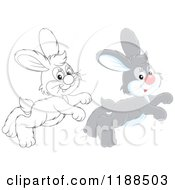 Cartoon Of Cute Happy Gray And Outlined Rabbits Hopping Royalty Free Vector Clipart