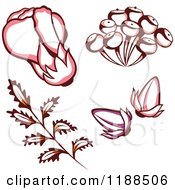 Clipart Of A Flower With Buds Pods And Leaves Royalty Free Vector Illustration