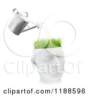 Clipart Of A 3d Watering Can Pouring Over Grass On A Head On White Royalty Free CGI Illustration