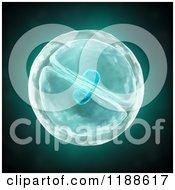 3d Dividing Cell