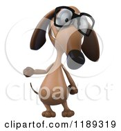 Clipart Of A 3d Dachshund Wearing Glasses And Presenting Royalty Free CGI Illustration