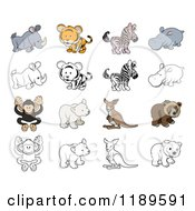 Cute Wild Animals In Color And Black And White