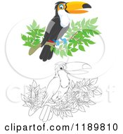 Cartoon Of A Happy Outlined And Colored Toucan Bird On A Branch Royalty Free Vector Clipart by Alex Bannykh