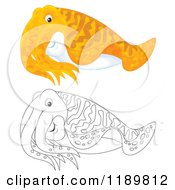 Cartoon Of A Cute Outlined And Colored Cuttlefish Royalty Free Clipart by Alex Bannykh