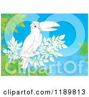 Cartoon Of A Happy Colorfully Outlined Toucan Bird On A Branch Royalty Free Clipart by Alex Bannykh