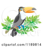 Cartoon Of A Happy Airbrushed Toucan Bird On A Branch Royalty Free Clipart by Alex Bannykh