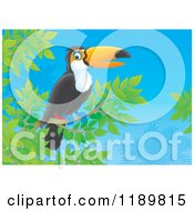 Cartoon Of A Happy Toucan Bird Resting On A Branch Royalty Free Clipart by Alex Bannykh