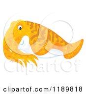 Cartoon Of A Cute Orange Cuttlefish Royalty Free Clipart by Alex Bannykh