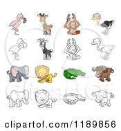 Flamingo Giraffe Orangutan Ostrich Elephant Lion Crocodile And Buffalo In Color And Outline
