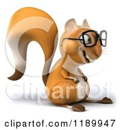 Squirrels with glasses - photo#28