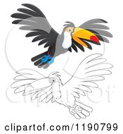 Cartoon Of A Happy Toucan Flying In Color And Outline Royalty Free Clipart by Alex Bannykh