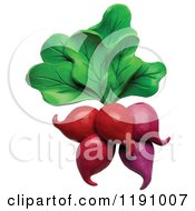 Clipart Of A Bunch Of Radishes And Greens Over White Royalty Free Illustration