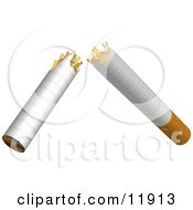 Cigarette Broken In Half Quit Smoking Clipart Illustration