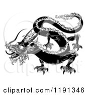 Clipart Of A Black And White Chinese Zodiac Dragon Royalty Free Vector Illustration by AtStockIllustration