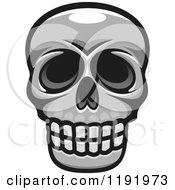 Poster, Art Print Of Grayscale Skull 4