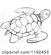 Clipart Of A Black And White Sea Turtle Royalty Free Vector Illustration