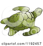 Clipart Of A Green Sea Turtle Royalty Free Vector Illustration