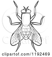 Clipart Of A Black And White House Fly Royalty Free Vector Illustration by Lal Perera