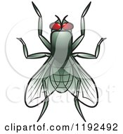 Clipart Of A House Fly Royalty Free Vector Illustration