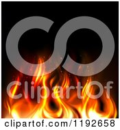 Hot Orange And Red Flames Over Black