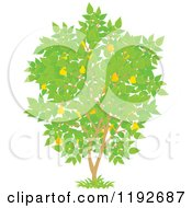 Cartoon Of A Fruit Tree With Yellow Pears And Green Leaves Royalty Free Vector Clipart